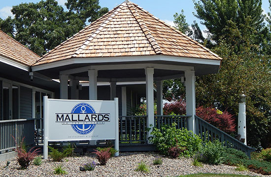 mallards_small